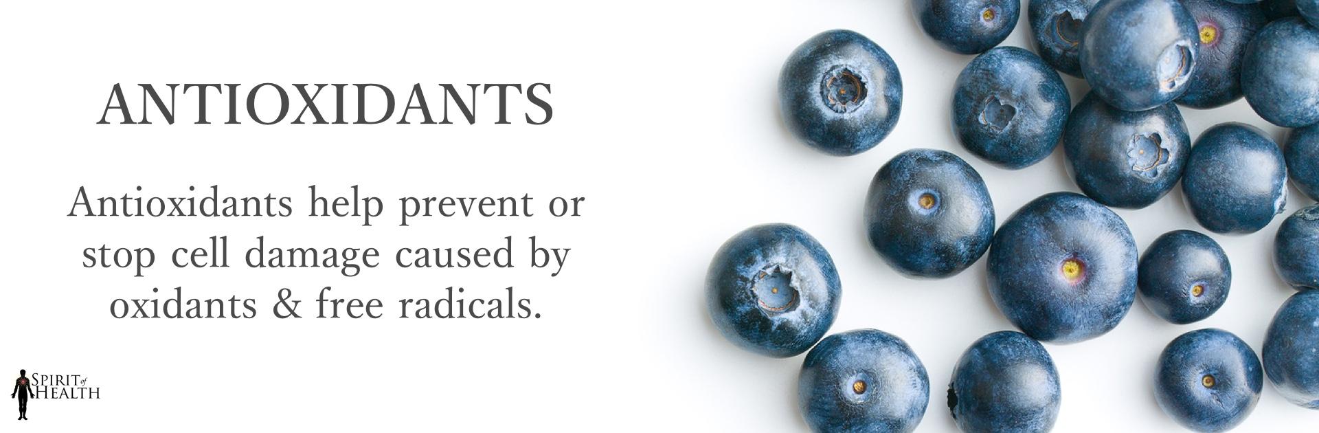 soh-store-banner-antioxidants2.jpg